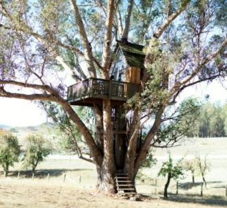 Treehouse at Swallowtail Studios in Petaluma, CA (rent on airbnb).
